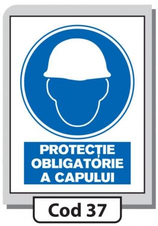 Indicator de securitate Cod 37
