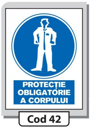 Indicator de securitate Cod 42