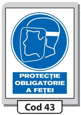 Indicator de securitate Cod 43
